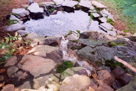 pond_waterfall_p18