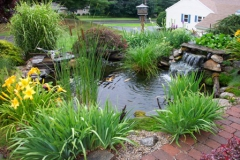 pond_waterfall_p14