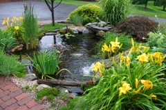 pond_waterfall_p15