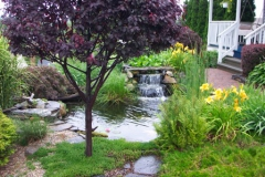 pond_waterfall_p16